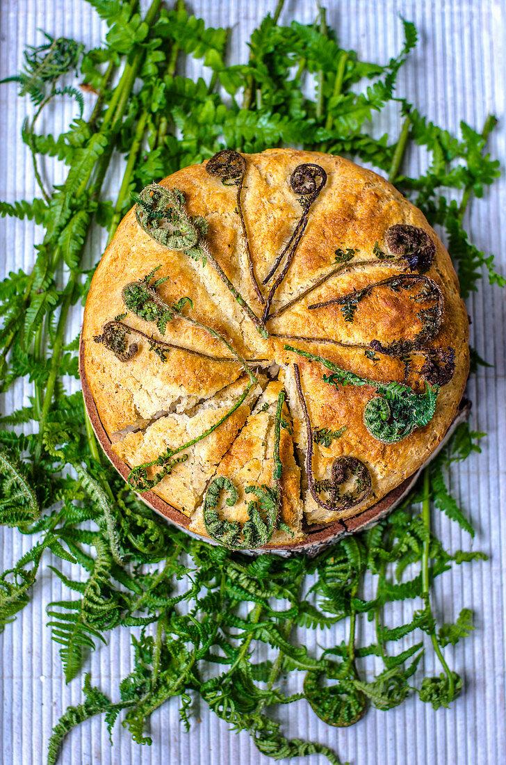 Bread with edible fern on fresh fern leaves