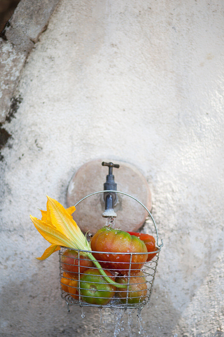 Tomatoes and courgette flowers in a wire basket hanging on a tap on a stone wall