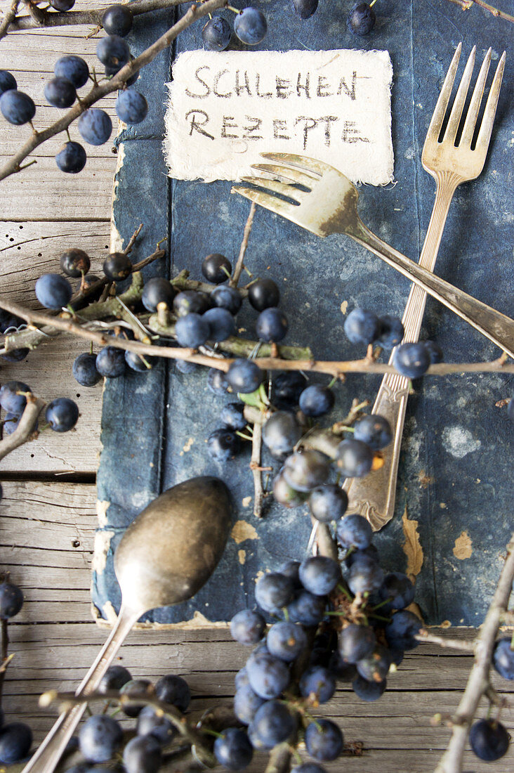 An old book for a sloe recipes and fresh berries