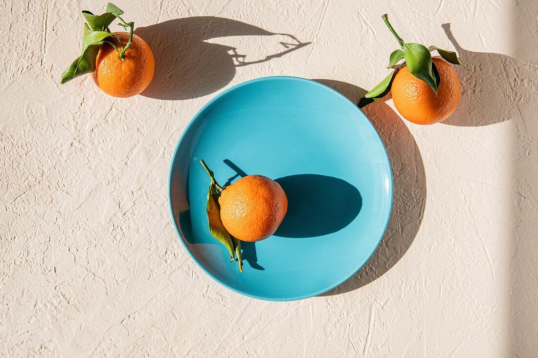 Still life with mandarins in hard light