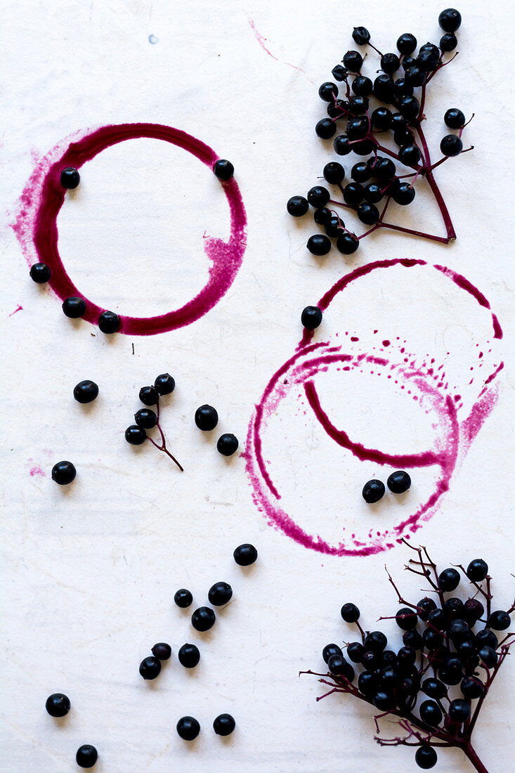 Elderberries and rings of elderberry juice