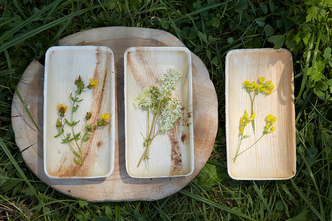 Freshly picked wildflowers sorted into three wooden bowls