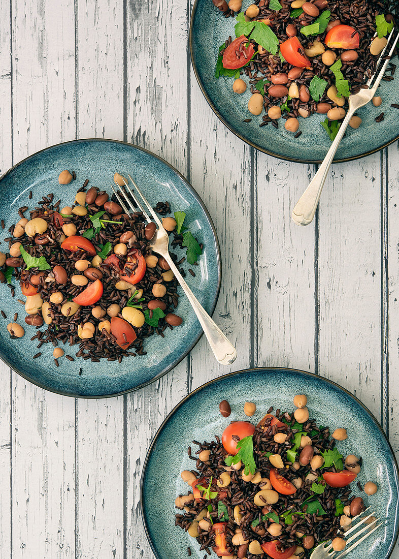 Servings of rice, beans and tomato salad on small plates