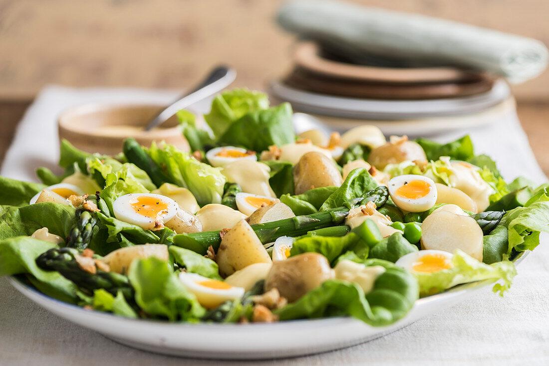Potato salad with lettuce, green asparagus, peas and quail eggs