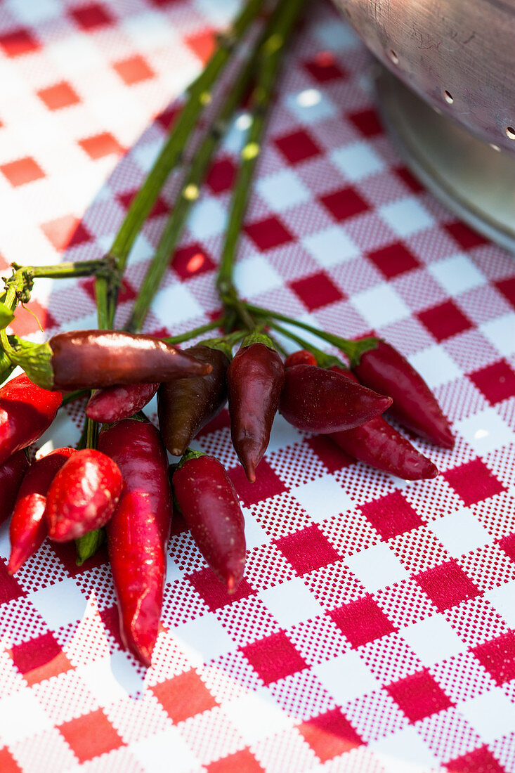 Hot peppers on a checked tablecloth