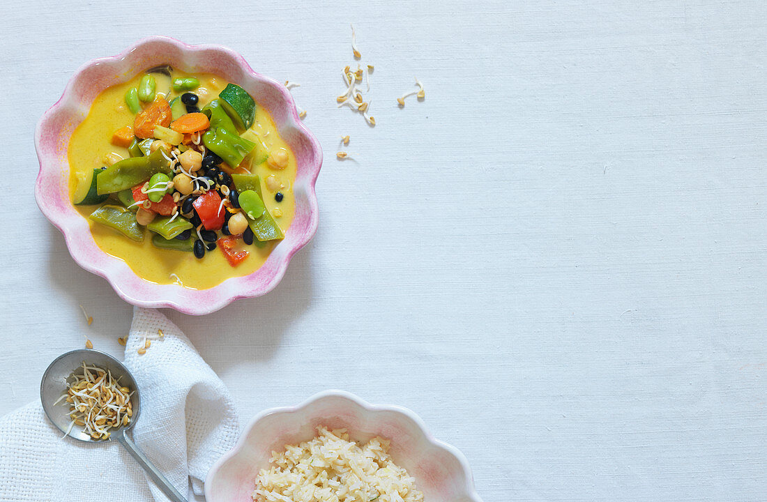 Vegetable curry with sprouts and rice