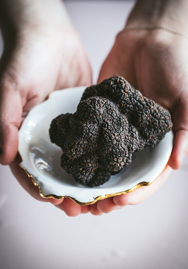 Black Truffles with hands