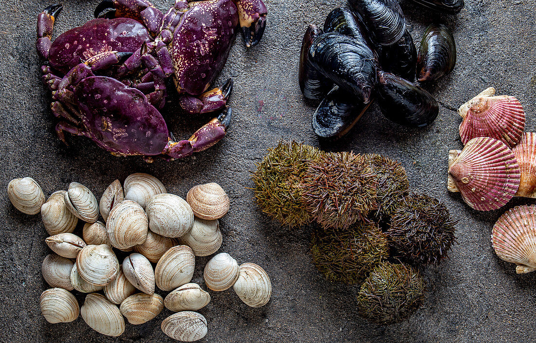 Raw crabs, clams, sea urchins, mussels, ostions