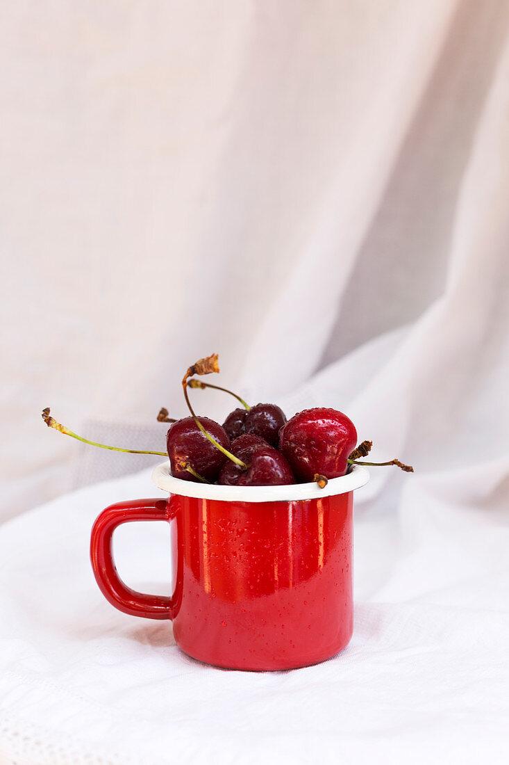 Kirschen mit Wassertropfen in roter Tasse