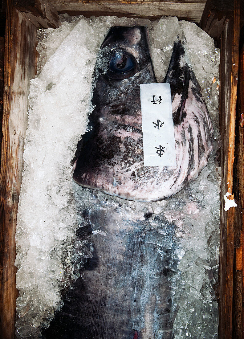 Fish in ice in wooden boxes