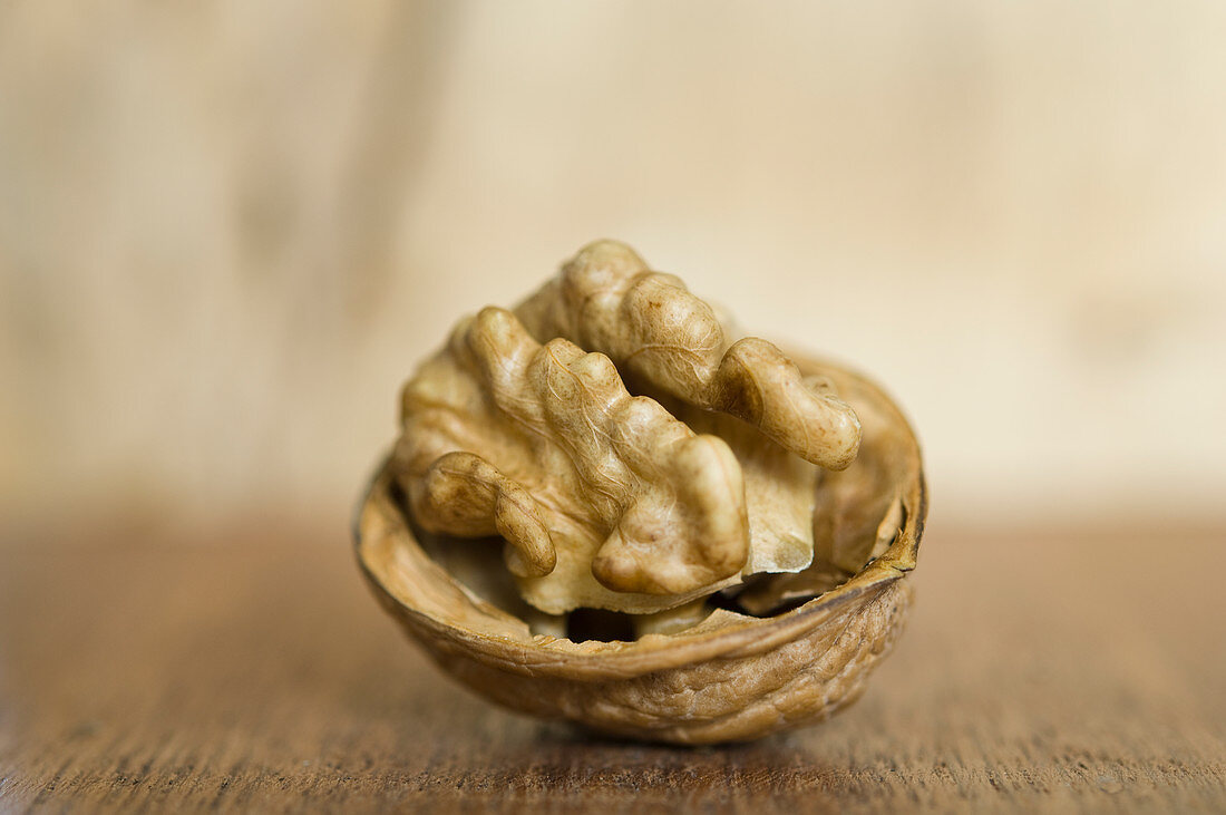 An open walnut with a shell on a wooden table