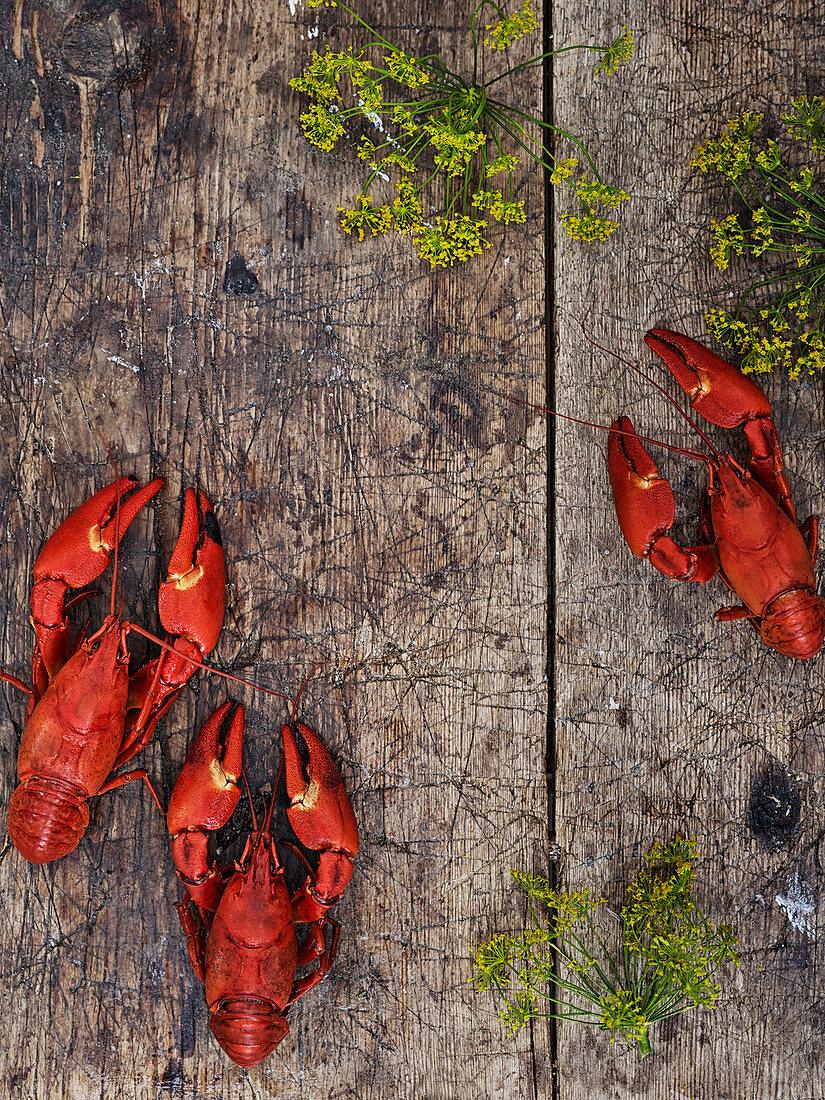 Crayfish on wooden background