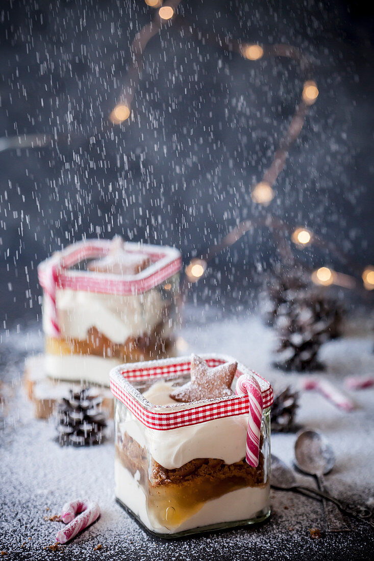 Christmas dessert trifle with vanilla, apples and gingerbread cookies