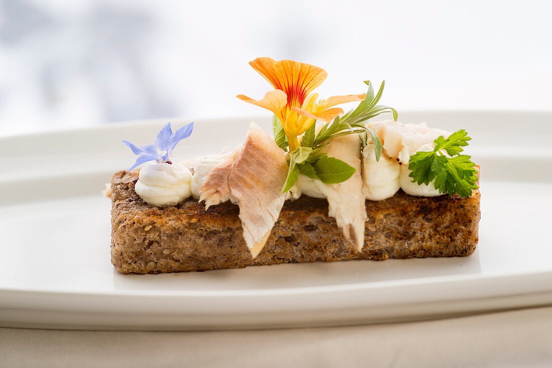 Smoked trout fillet on nut bread with horseradish foam