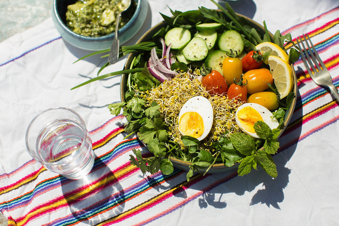 Salad bowl broccoli sprouts, cucumber, egg, garden herbs and pesto dressing