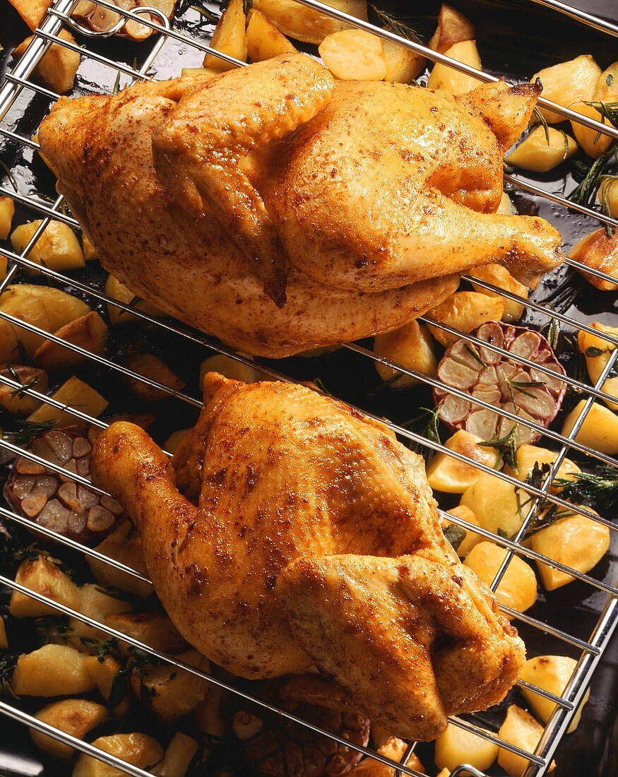 Two roast chickens on rack above baked potatoes, sweetcorn