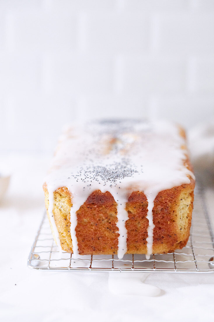 Moist poppyseed and lemon cake on a cooling rack