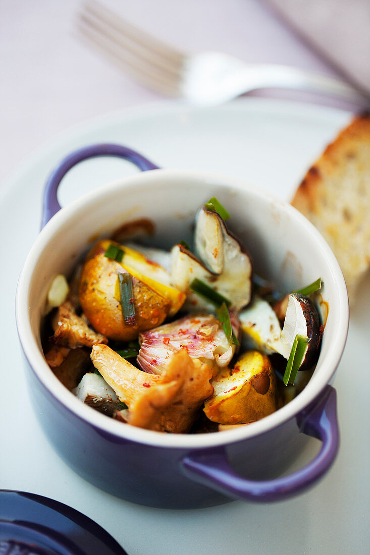 Wild mushrooms cocotte with grilled bread