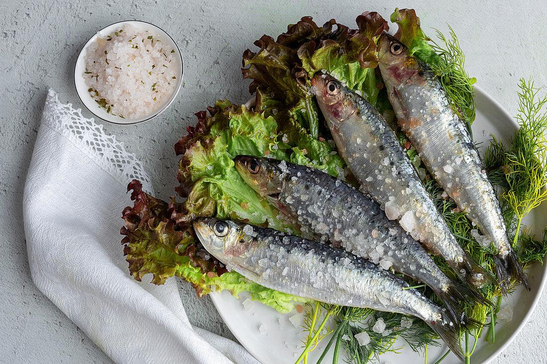 Prepared savory mackerel served on salad with pieces of sea salt on plate