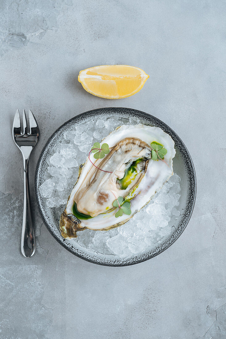 Lemon on oysters on Ice cube on a bowl in a white background