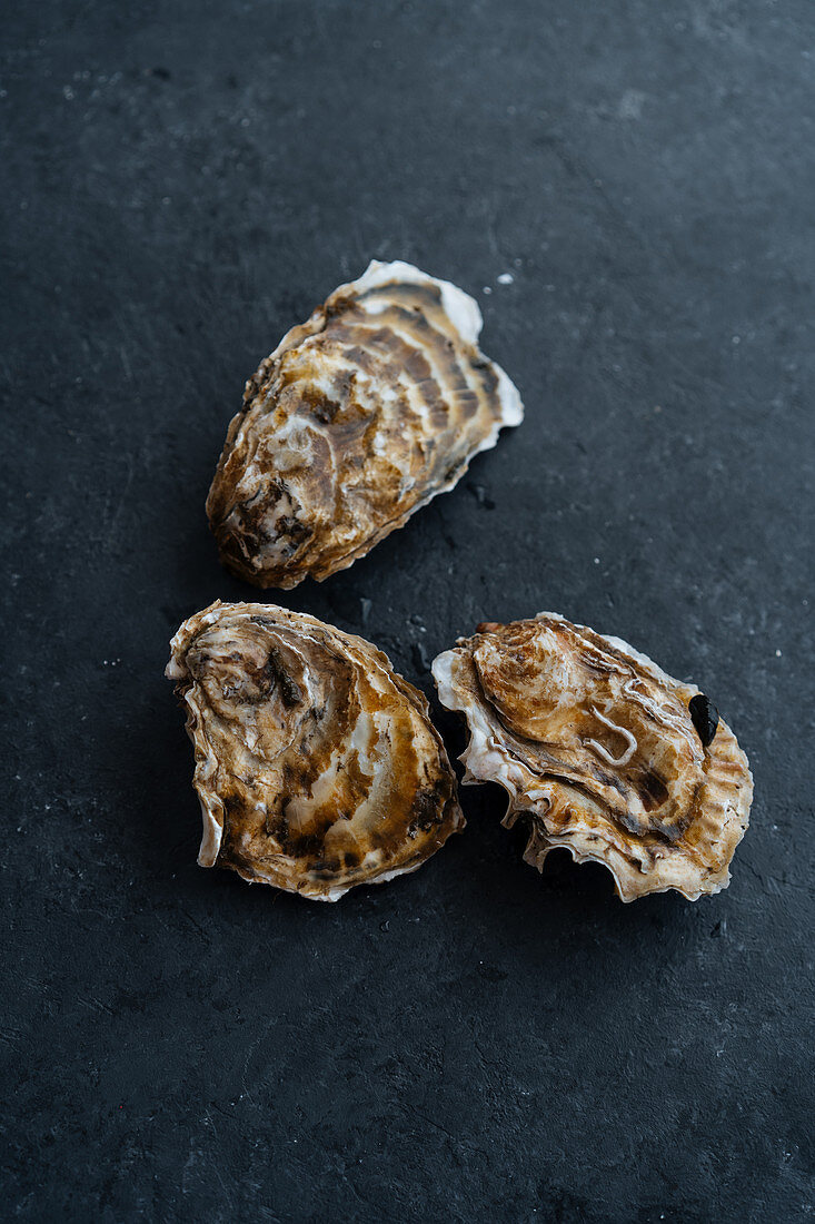 Uncooked clams placed on black table surface