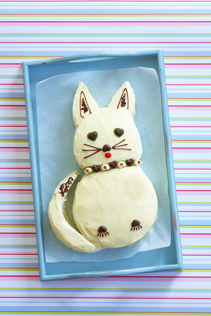 Cat cake for a children's party