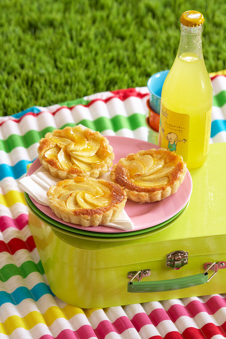 Fruit and almond cream tarts for a picnic