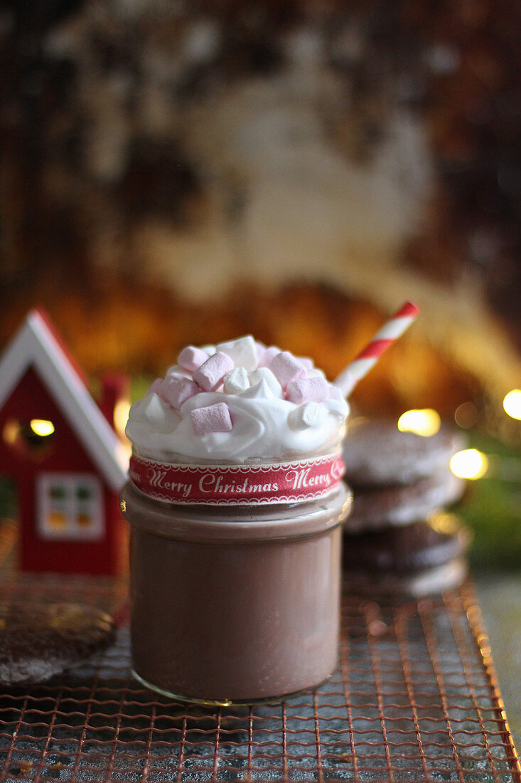 Cocoa with marshmallows for Christmas