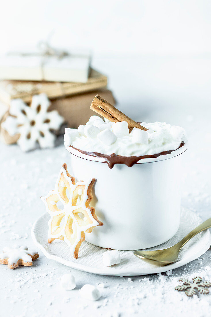 Hot chocolate and sugar cookie