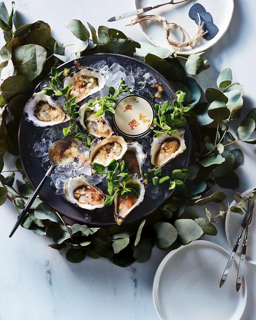 Horseradish cream oysters