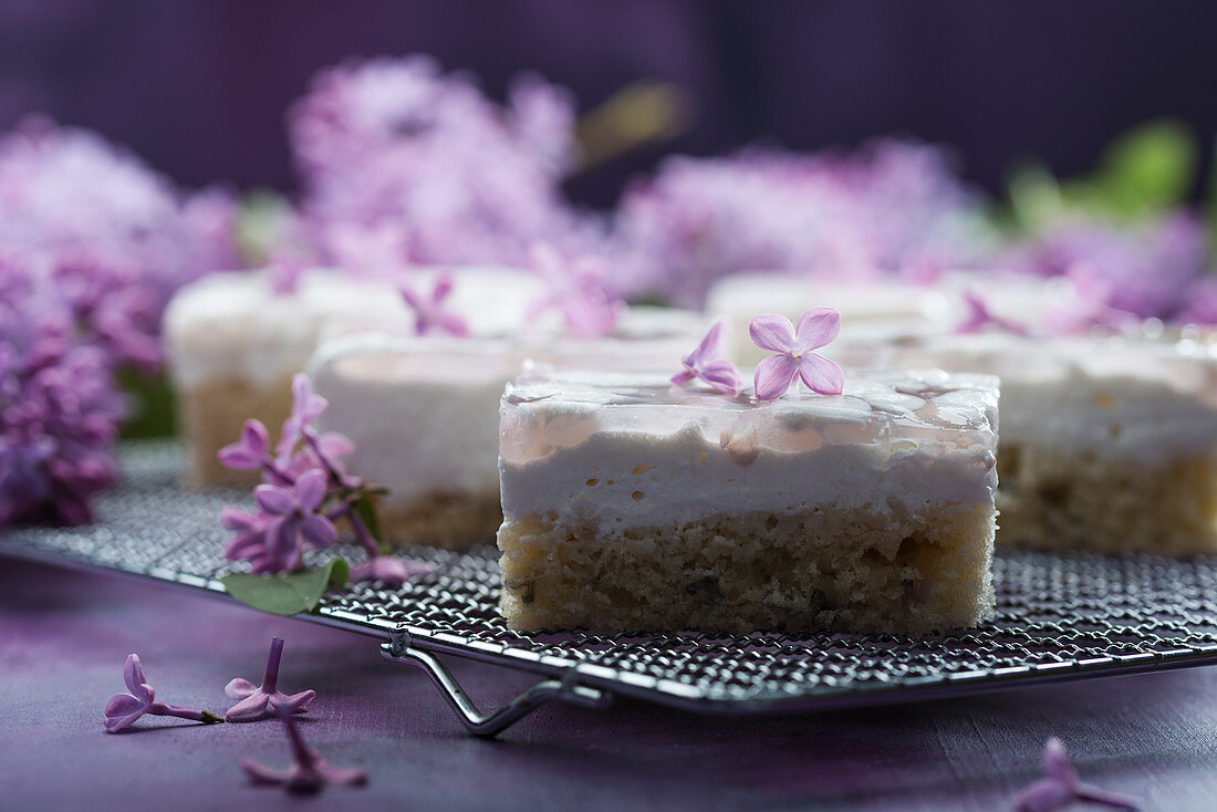 Lilac cake with cream and lilac jelly