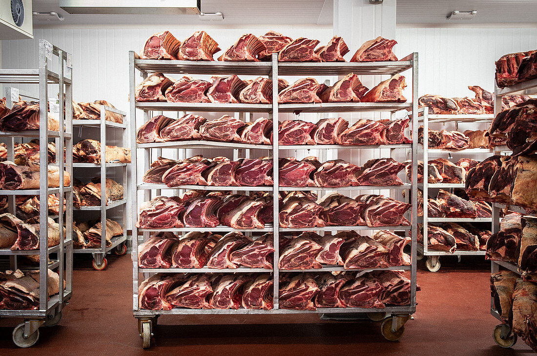 Raw meat on shelves in a slaughter house
