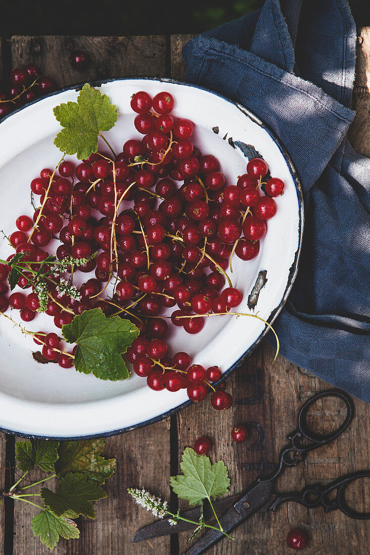 Redcurrants on an enamel plate