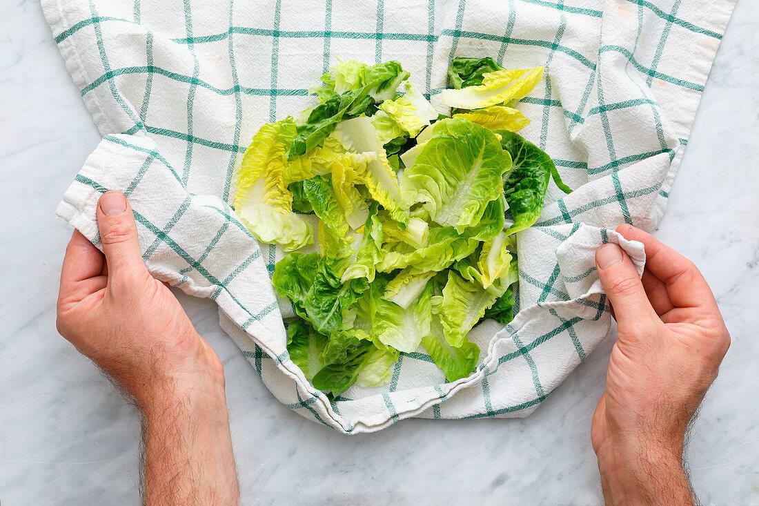 Lettuce leaves being dried in a tea towel