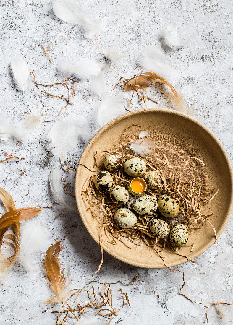 Quail eggs in a brown ceramic bowl, one egg is cracked open, and feathers are around the bowl