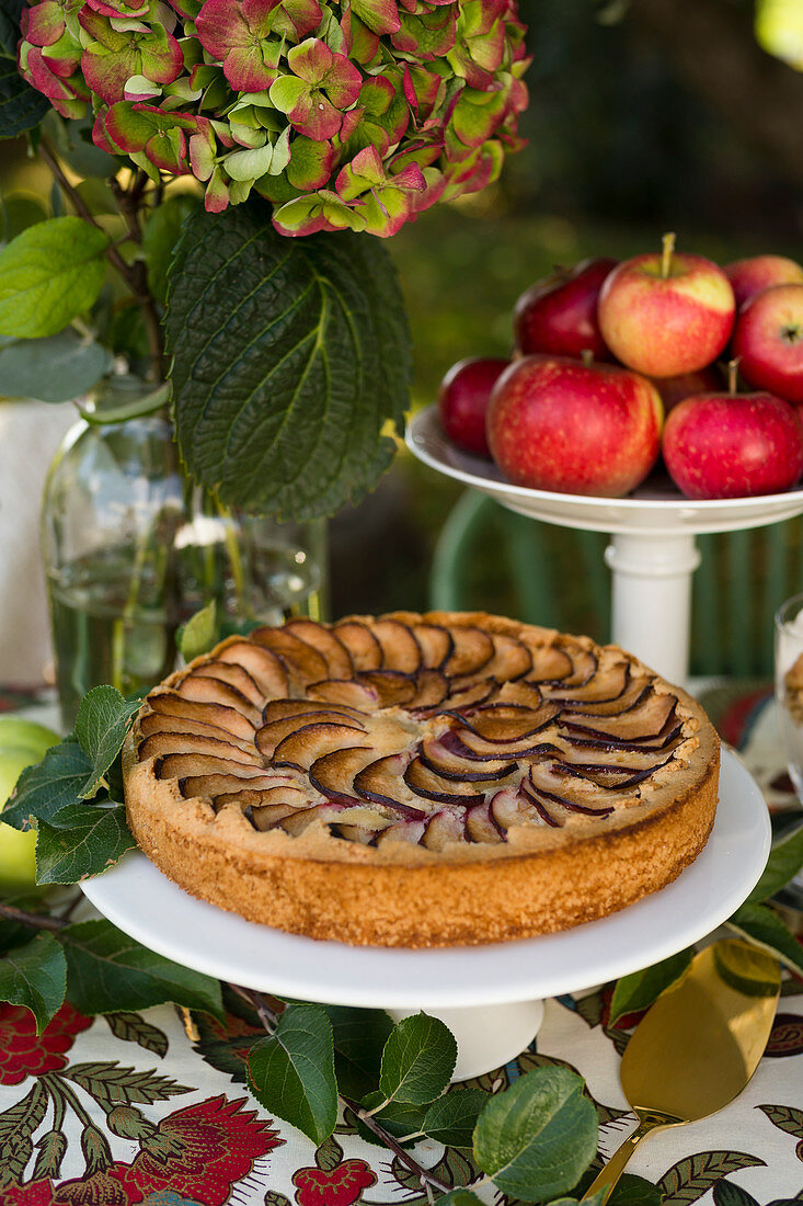 Apple tart with sour apples