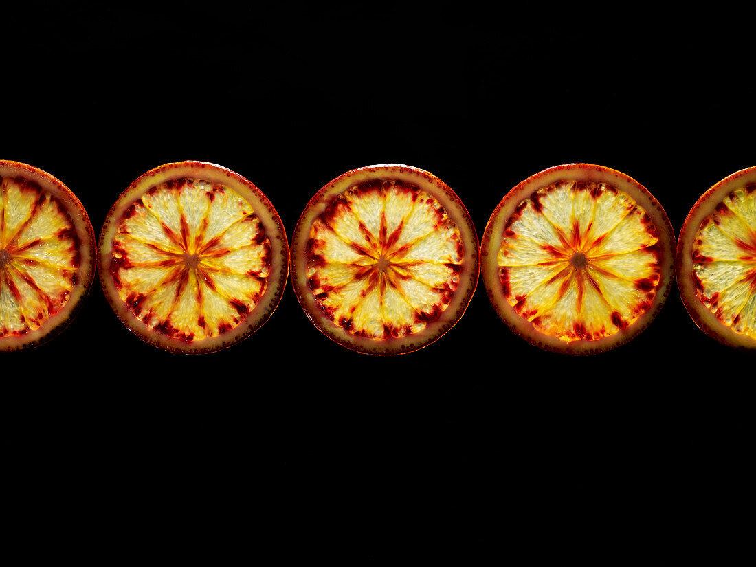 Backlit portrait of blood orange slices