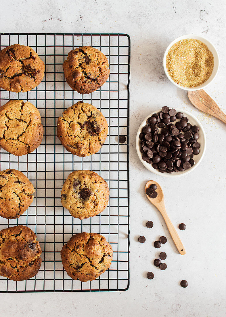 Homemade cookies with chocolate chips placed on kitchen grid