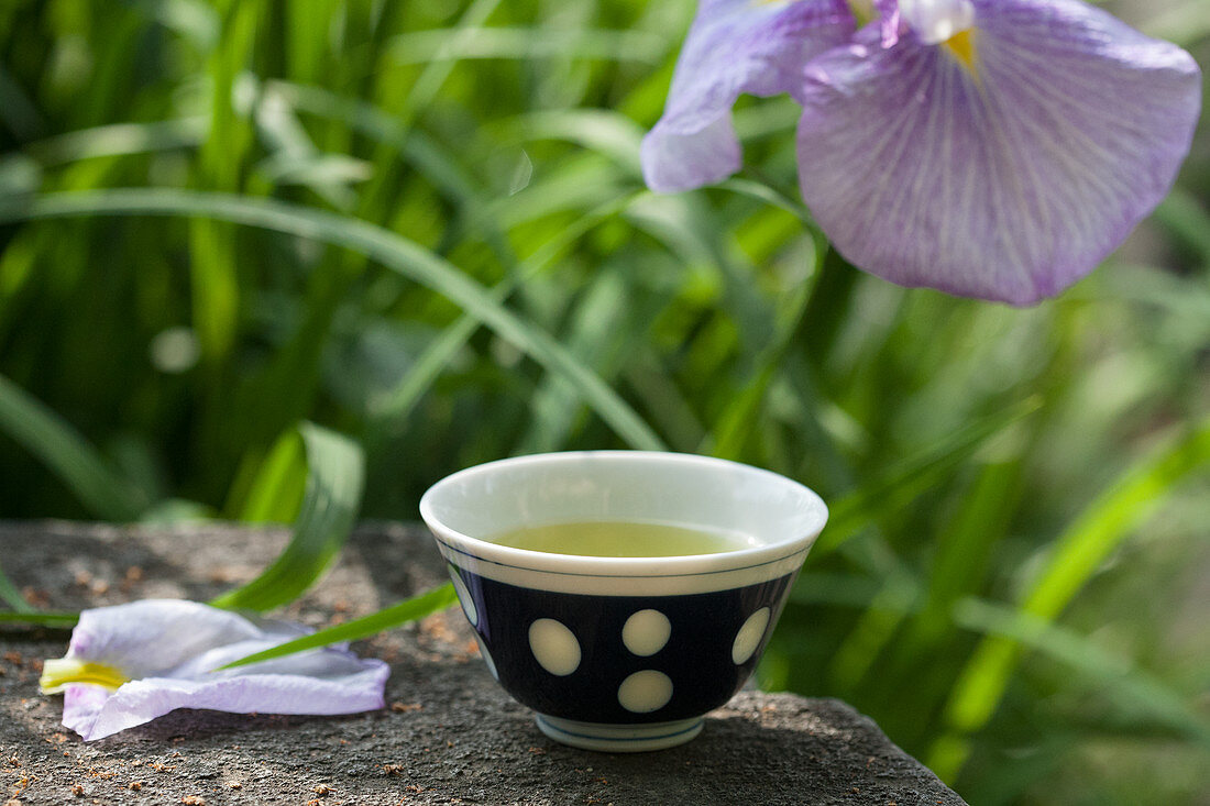 Green tea in a tea bowl and Japanese yellow iris