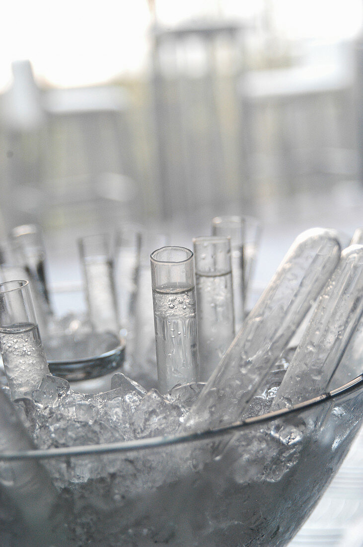 Test tube for cocktail shots in a bar