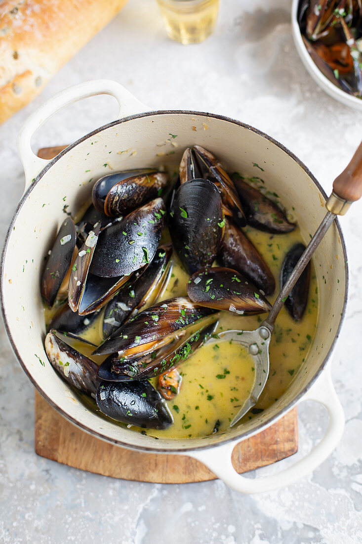A pot of cooked mussels mit wine sauce