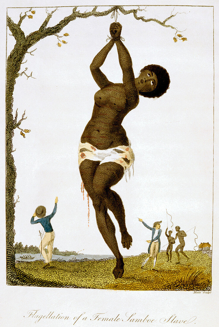 Flagellation of a Female Samboe Slave', 1793