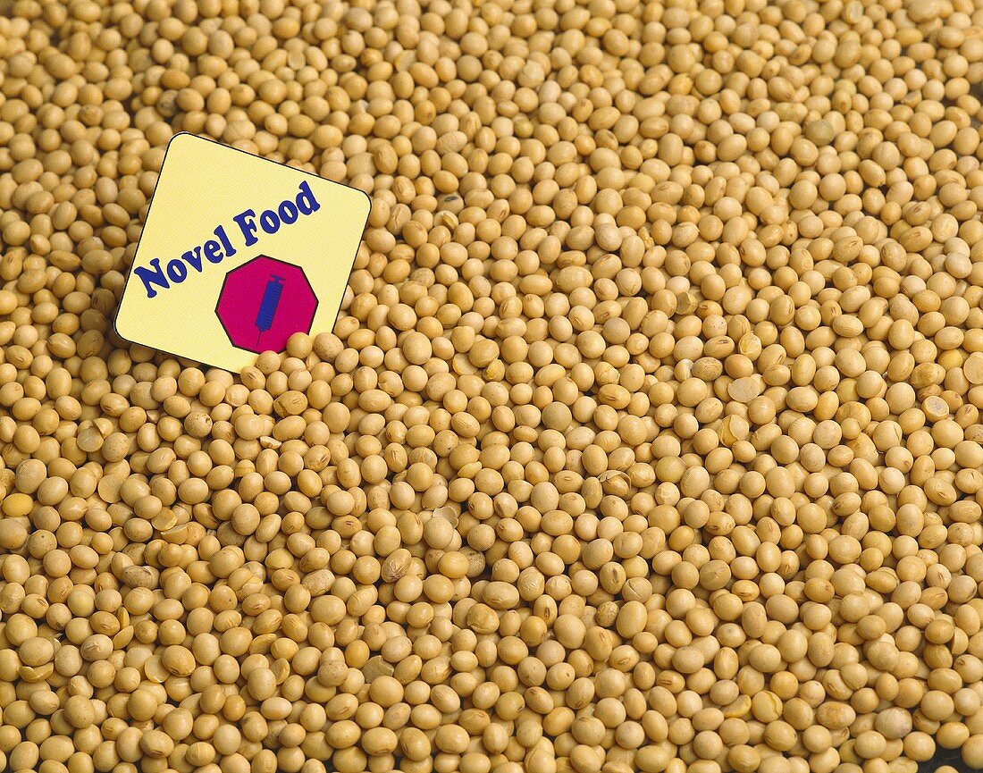 Genetically Altered Soybeans
