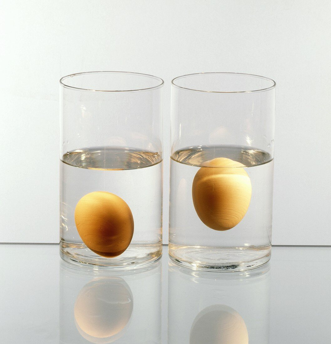 Two Brown Eggs in a Glass of Water