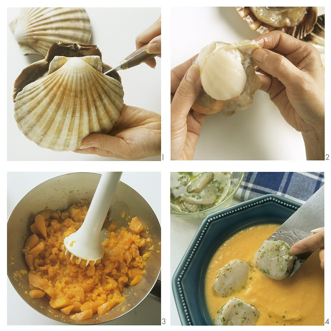 Making carrot soup with scallops