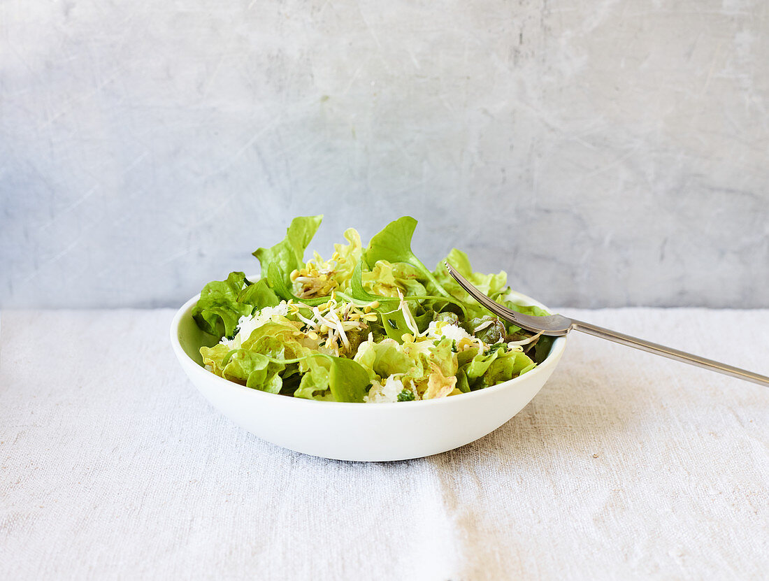 Batavia lettuce with turnips and purslane