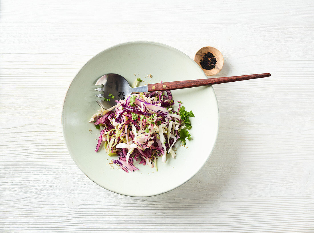 Red and pointed cabbage salad