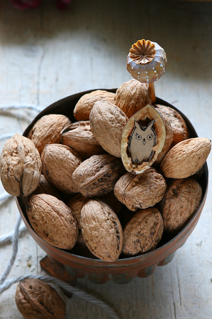 Walnuts in old copper jelly mould, one nut shell decorated with paper owl