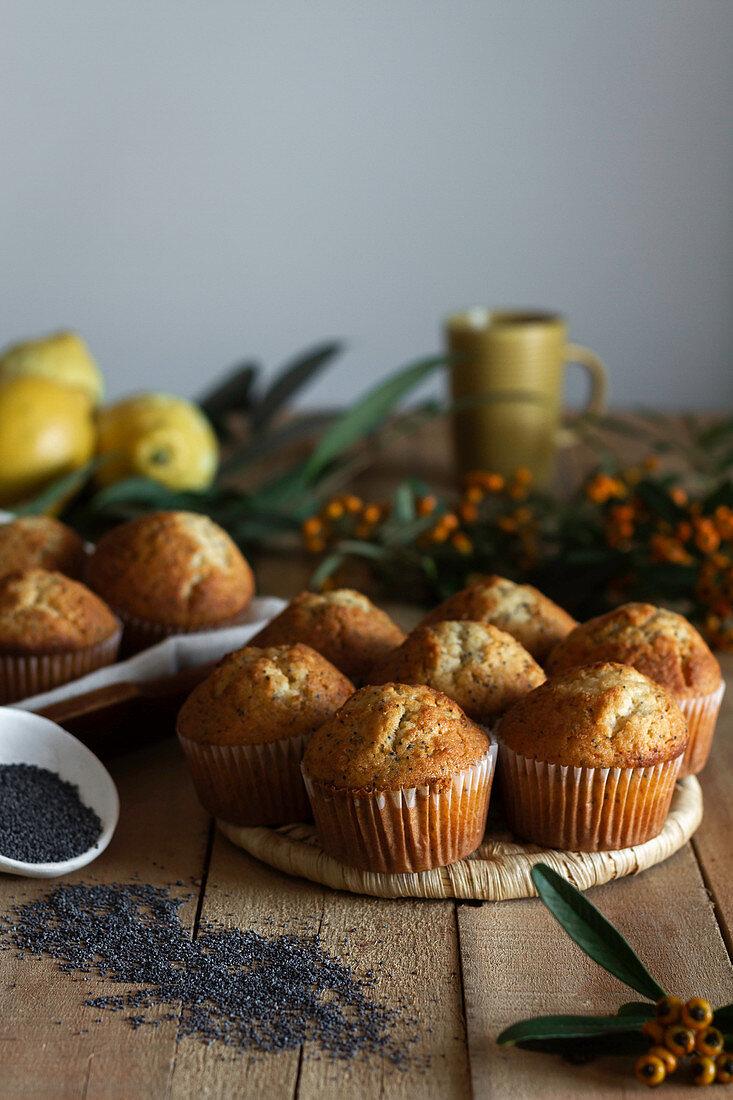 Zitronenmuffins mit Mohn