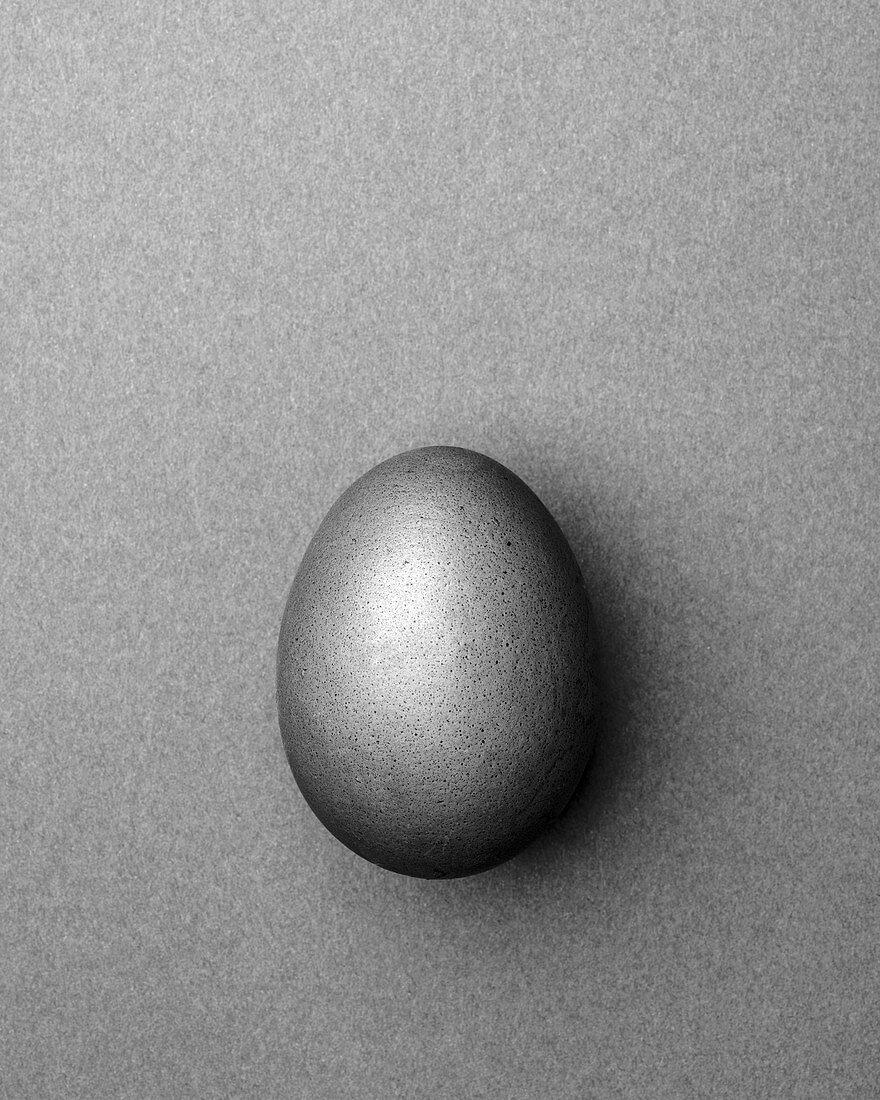 Light gray Easter egg on a light gray background